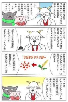 マンガ・アカシアファイバー【iHerb・海外サプリ】