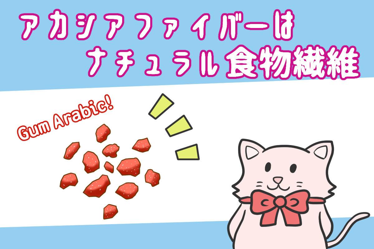 アカシアファイバーはナチュラル食物繊維【iHerb・海外サプリ】