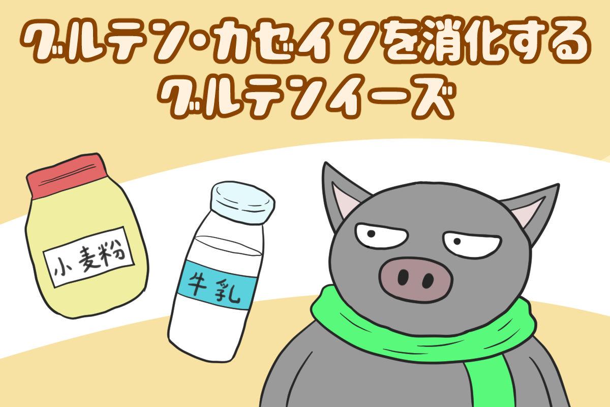 グルテン・カゼインを消化するグルテンイーズ【iHerb・海外サプリ】