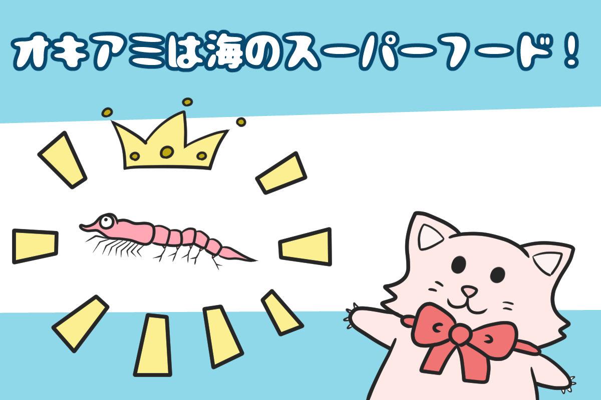 オキアミは海のスーパーフード