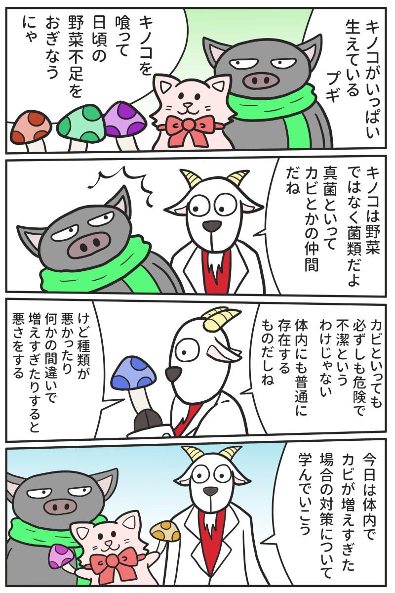 マンガ・体内のカビやカンジダについて【iHerb・海外サプリ】