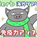 【iHerb】優良・海外サプリで免疫力を高め、風邪や体調不良を予防しよう